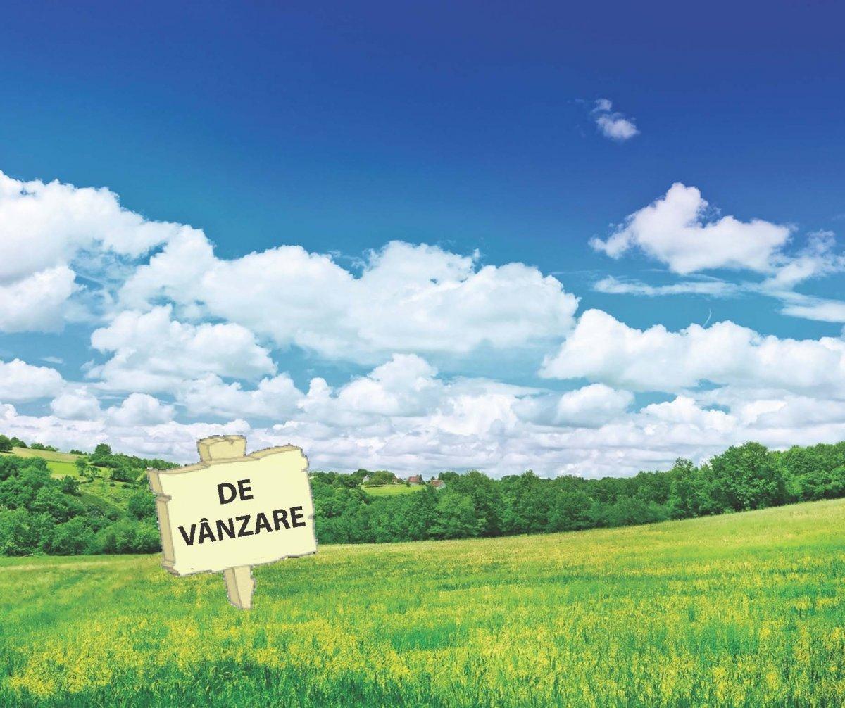 OFERTE DE VANZARE TEREN
