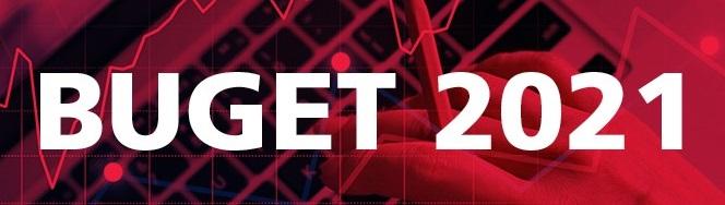 Proiectul de buget pentru anul 2021