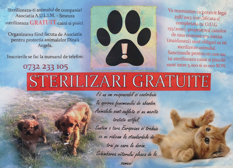Sterilizari gratuite caini si pisici